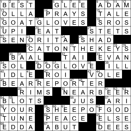 Images - Still the same crossword clue